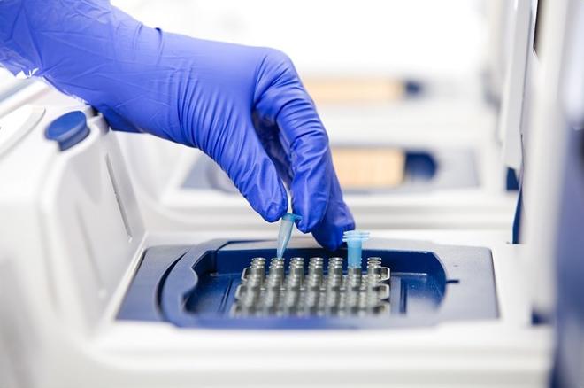 PCR - LABORATORIO