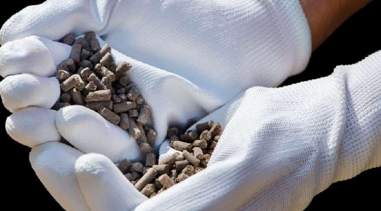 ¿Cómo el peletizado reduce el riesgo de patógenos en la cría animal?