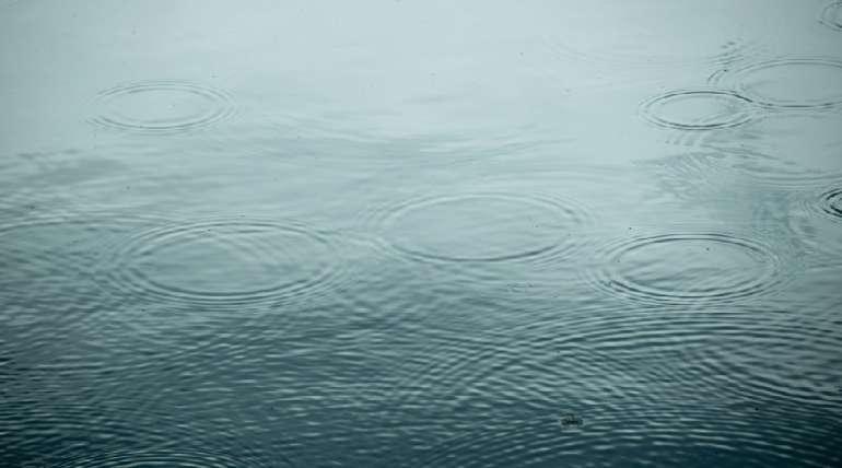¿Cómo afectan las lluvias en la camaronicultura?
